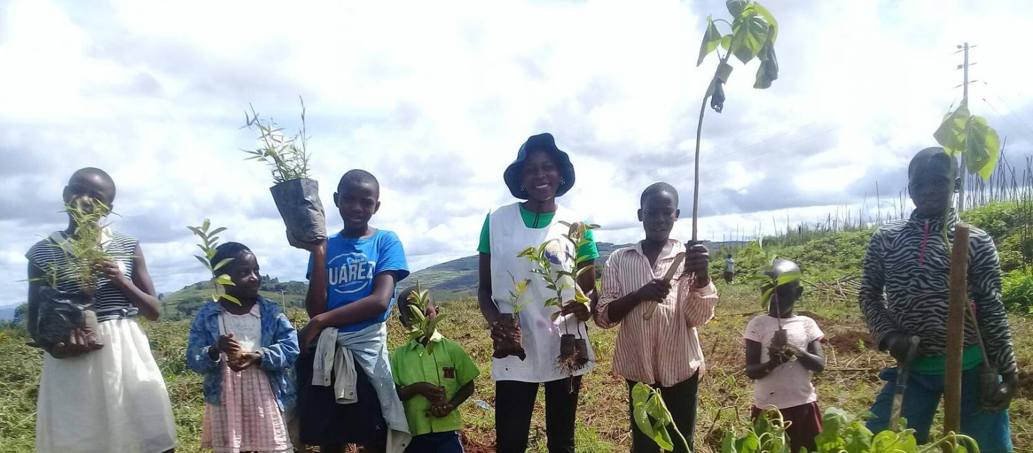 One World Tree Planting